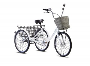 LEADER FOX TRICYCLE 1-SPEED
